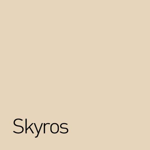 skyros-500x500